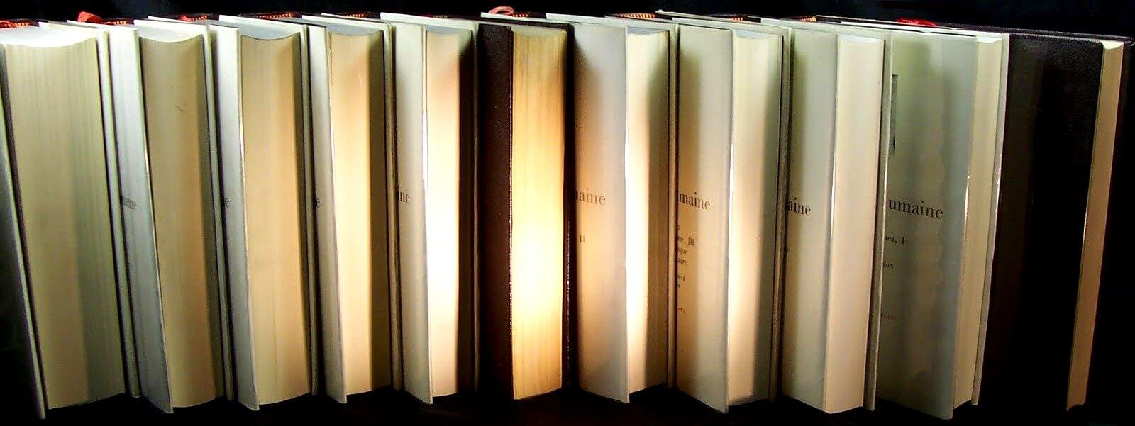 Vertaling Balzac. Voorwoord Comédie Humaine.De menselijke comedie, voorwoord, Honoré de Balzac, 94 romans, realistisme XVIIIe eeuw, VertalingenVivienne