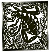 Guillaume Apollinaire,Le Bestiaire, De vlo. De gedichten uit le Bestiaire, het Bestiarium, zijn geïllustreerd met houtgravures van Raoul Dufy, Vertalingen, Vivienne Stringa