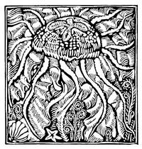 Guillaume Apollinaire,Le Bestiaire, De kwal. De gedichten uit le Bestiaire, het Bestiarium, zijn geïllustreerd met houtgravures van Raoul Dufy, Vertalingen, Vivienne Stringa