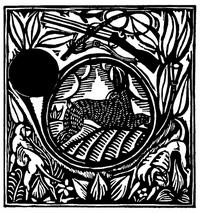 Guillaume Apollinaire,Le Bestiaire, De haas. De gedichten uit le Bestiaire, het Bestiarium, zijn geïllustreerd met houtgravures van Raoul Dufy, Vertalingen, Vivienne Stringa