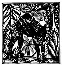 Guillaume Apollinaire,Le Bestiaire, De dromedaris. De gedichten uit le Bestiaire, het Bestiarium, zijn geïllustreerd met houtgravures van Raoul Dufy, Vertalingen, Vivienne Stringa